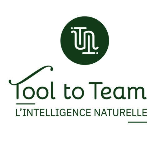 Création du logo tool to team